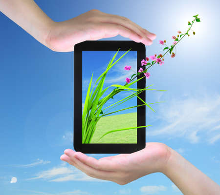 pink flower and fresh grass on tablet PC in women hand photo