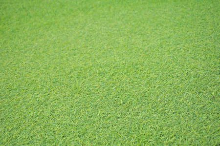 artificial grass pattern background photo