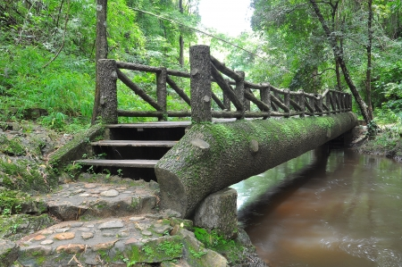 wood bridge on the river