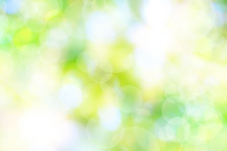 abstract spring green background and light reflect photo