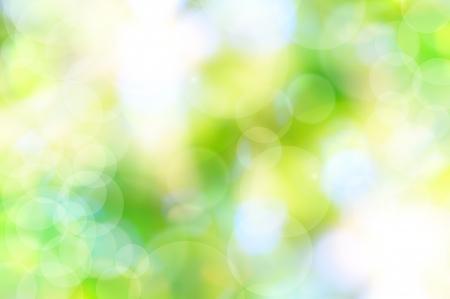 feuillage: abstraite printemps fond vert et la lumi�re refl�te Banque d'images