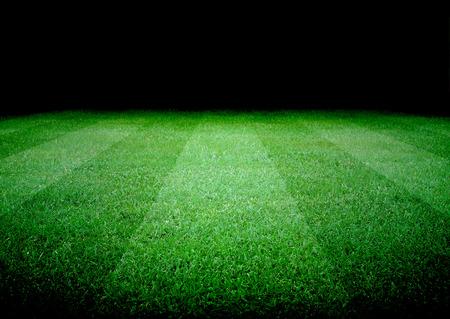cancha de futbol: campo de fútbol y las luces brillantes