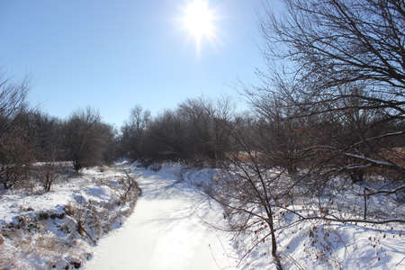 winters: Looking down a creek on a sunny winters day
