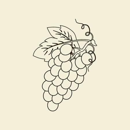 Icono de la fruta uvas. ilustración vectorial Ilustración de vector