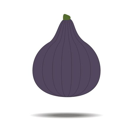 fig: Fig Fruit Icon on the white background. Vector illustration