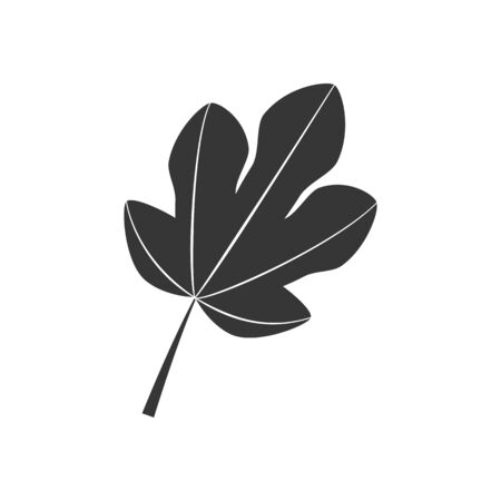 feuille de vigne: Fig Icône feuille sur le fond blanc. Vector illustration Illustration