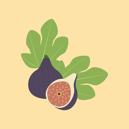 Fig Fruit Icon on the yellow background. Vector illustration
