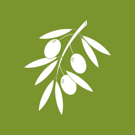 olive green: Olive branch icon on a green background. Silhouette. Vector illustration