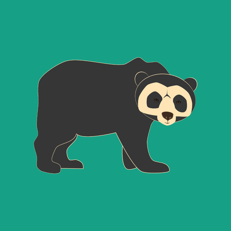 sloth: Spectacled bear animal illustration on the green background. Vector illustration Illustration