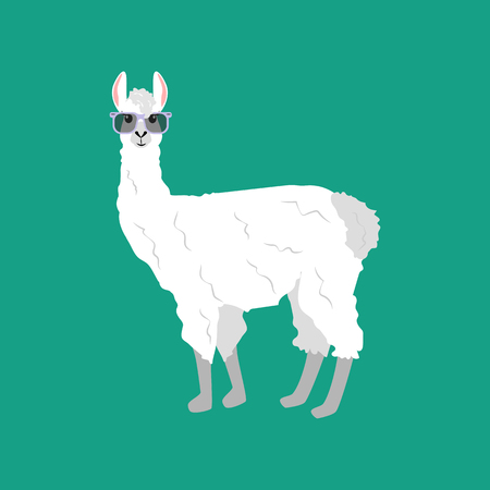 Llama in glasses illustration on the green background. Vector illustration Illustration