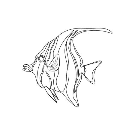Moorish idol fish coloring pages