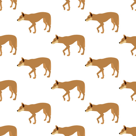 The Australian Dingo seamless pattern on the white background, Vector illustration Illustration