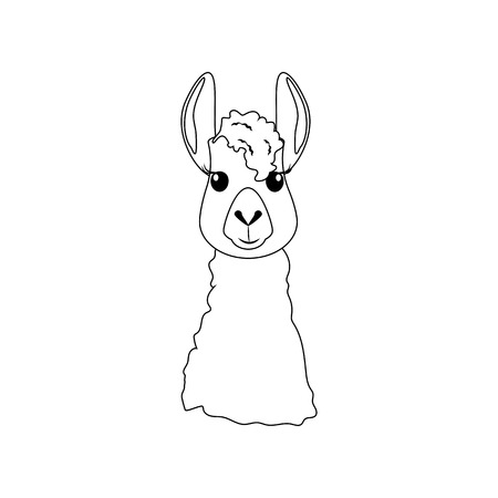 Llama head illustration on the white background. Vector illustration