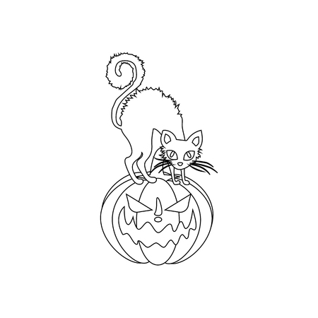 Jack-o-lantern pumpkin and cat on white background. Vector illustration
