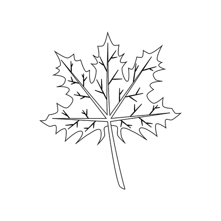 Maple leaf on the white background. Vector illustration 일러스트