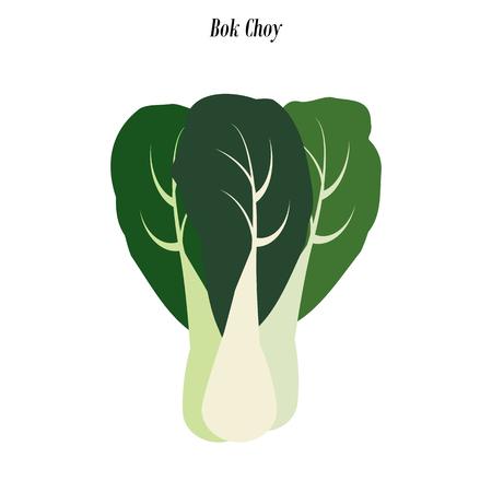 Bok choy illustration