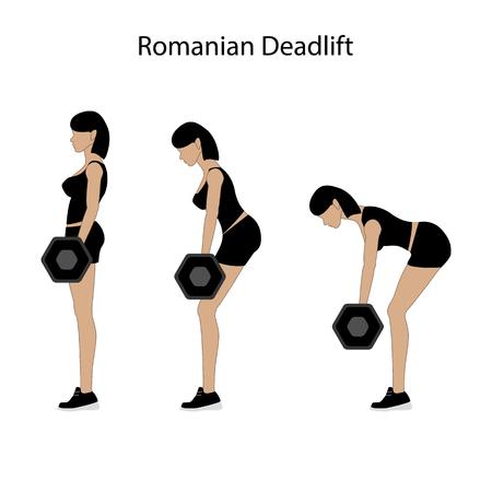 Romanian deadlift exercise on the white background. Vector illustration