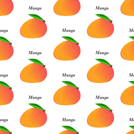 Mango fruit seamless pattern on the white background. Vector illustration
