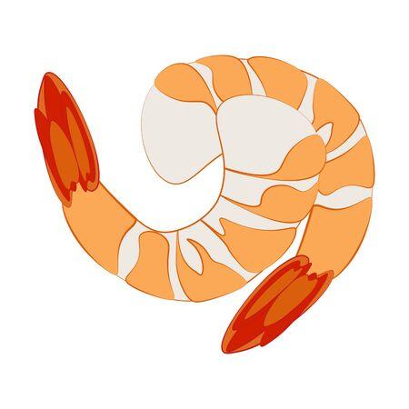 Shrimp seafood illustration