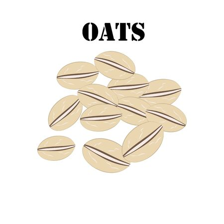Oats cereal illustration on the white background. Vector illustration 일러스트