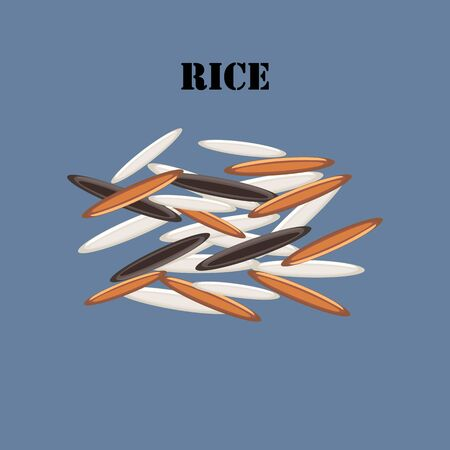Rice illustration on the blue background. Vector illustration