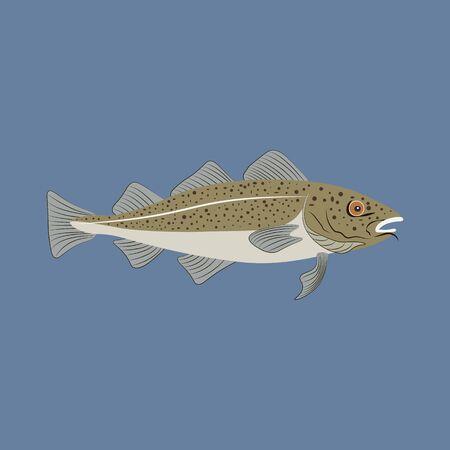 Codfish fish illustration on the blue background. Vector illustration Çizim