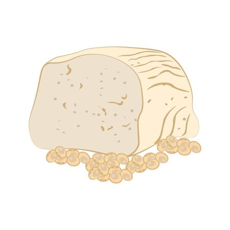 Tofu cheese vector illustration on the white background. Vector illustration