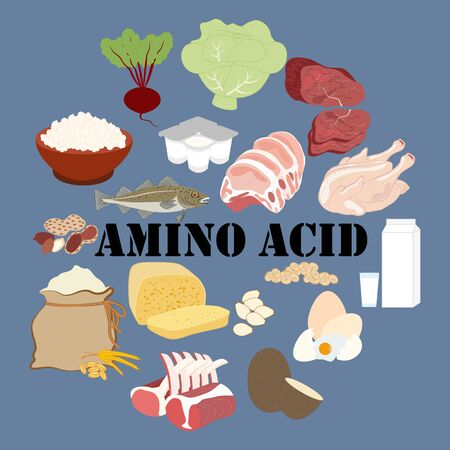 Amino acid rich food on the blue background. Vector illustration Illustration