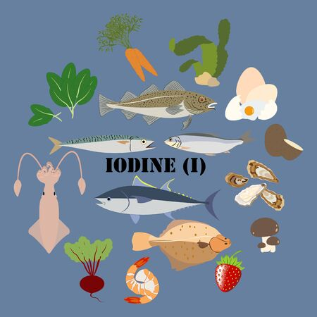 Iodine mineral rich food illustration on the blue background. Vector illustration