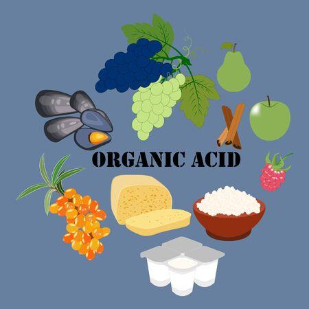 Organic acid rich food on the blue background. Vector illustration