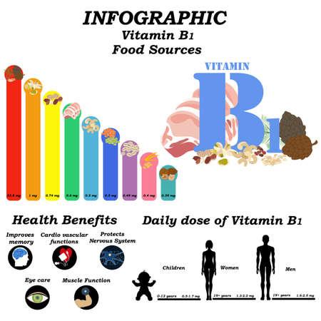 Vitamin B1 infographic illustration on the white background. Vector illustration