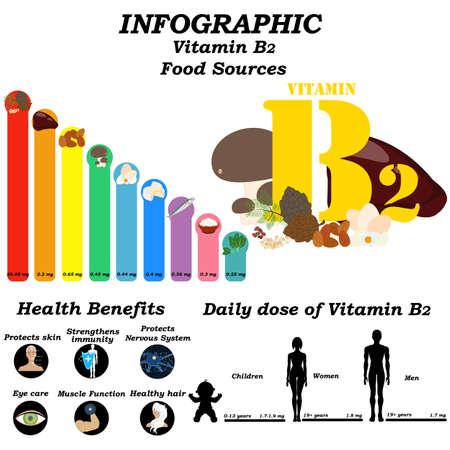 Vitamin B2 infographic illustration on the white background. Vector illustration Illusztráció