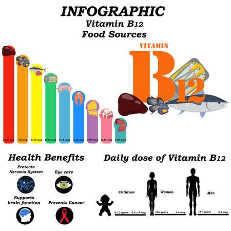 Vitamin B12 infographic illustration on the white background. Vector illustration