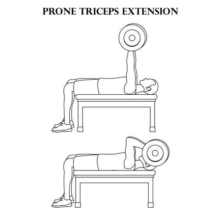 Prone triceps extension vector illustration outline on the white background.