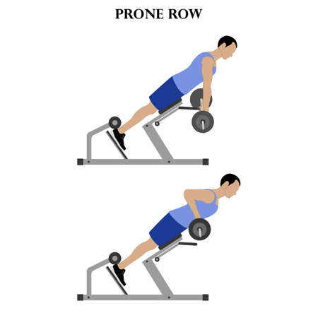 Prone row exercise workout vector illustration on the white background. Vector illustration