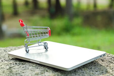 trolley with computer, idea for shopping and online payment using as business background