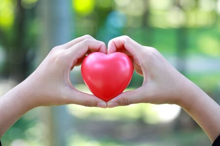 human hands doing heart symbol on nature background