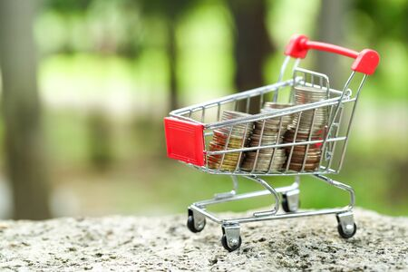 trolley with money, idea for shopping using as business background