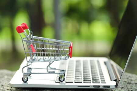 trolley with computer, idea for shopping and online payment using as business background Stok Fotoğraf - 132392637