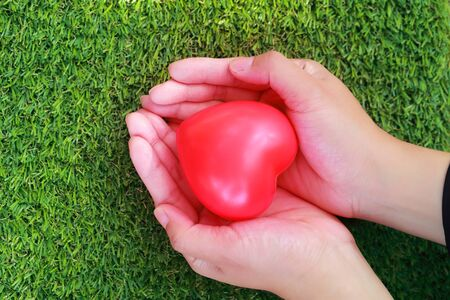 human hands holding red heart on green glass Stok Fotoğraf - 132001084