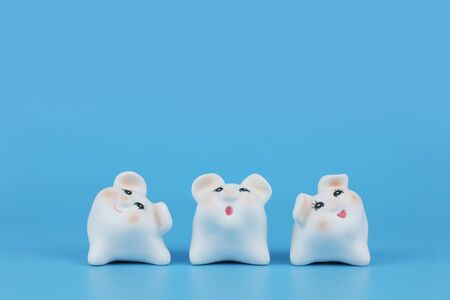 2019 Chinese Zodiac Sign Year of Pig, white cute pigs on blue background Stock Photo