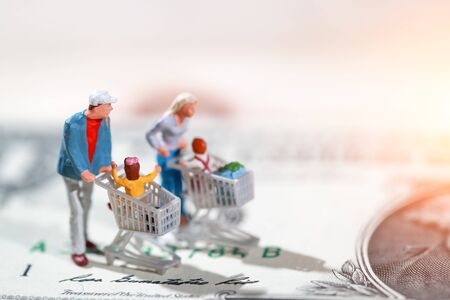 Miniature people: shopper walking on dollar bank note as payment and purchase online (e-commerce and shopping concept) Stok Fotoğraf