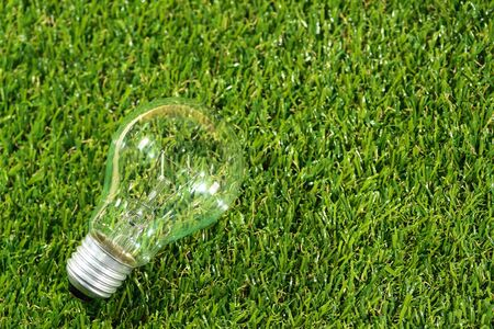 electric glass bulb on grass (creative concept)