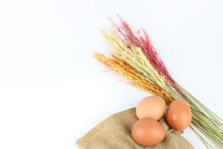 eggs with rice straw isolated and white background (easter concept)