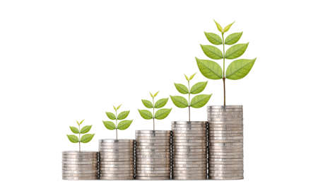 Business investment and saving growth for advertising concept. Plant growing on stacking coin on isolated and white background studio, meaning of growing or saving or earning money Stok Fotoğraf