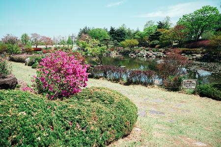 Park landscape in Seoul National Cemetery, Korea
