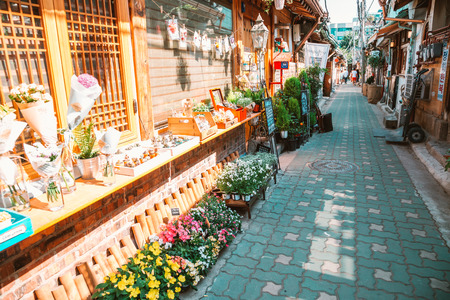 Seoul, Korea - June 5, 2017 : Flower shop in Korean old street 新闻类图片