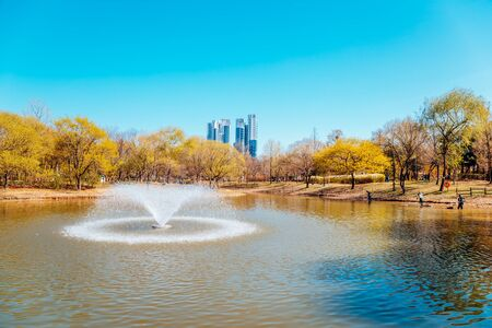 Fountain on pond at Seoul forest park in Korea Stock Photo