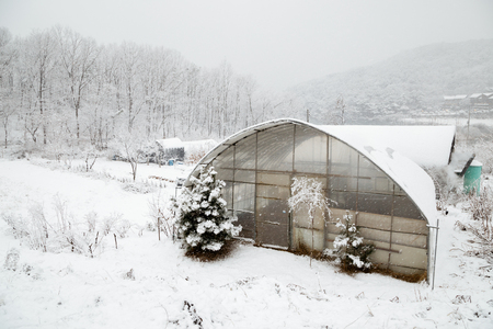 Snow covered greenhouse and countryside village at winter Standard-Bild