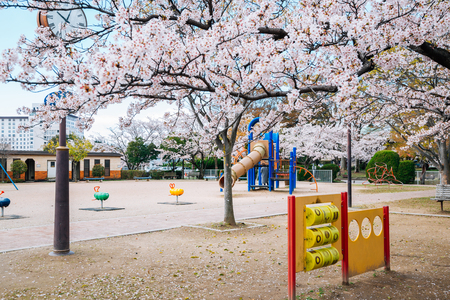 Colorful children playground with spring cherry blossoms 写真素材
